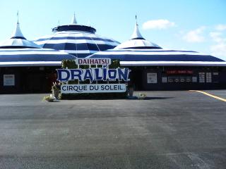 20071117dralion02