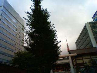 20080829shiba01