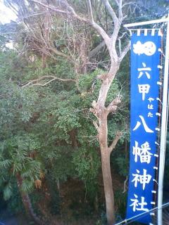 20100207rokko_yahata01